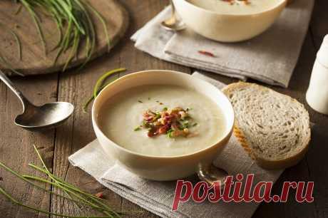 Крем-суп из фасоли способен согреть и насытить в промозглые ноябрьские вечера Для полного счастья в холодные осенние дни достаточно лишь тарелки горячего домашнего супа. Однако не все хотят ужинать обычным супом, душа ведь хочет чего-то особенного. Тогда-то на помощь и приходит крем-суп...