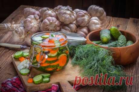 Консервированные салаты из огурцов на зиму: 9 рецептов как заготовить огуречные салаты
