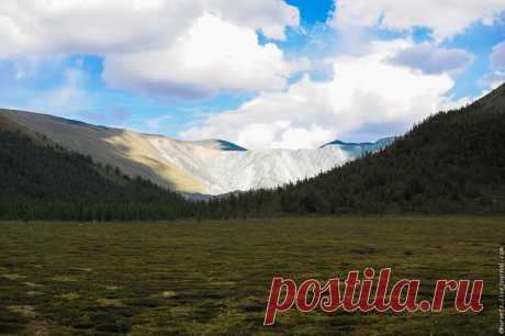 На Алтае, на перевале Кара-Тюрек - 7 Ноября 2016 - Персональный сайт