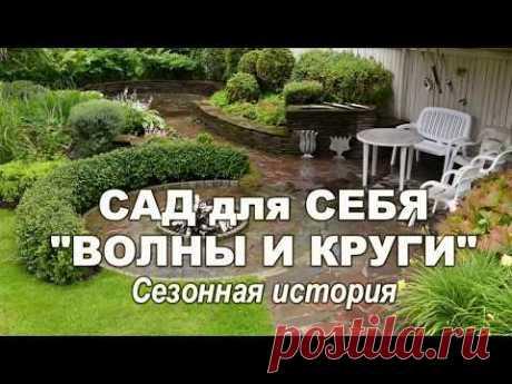 "Сад Дмитрия Патрикеева ""Волны и круги"" - YouTube"