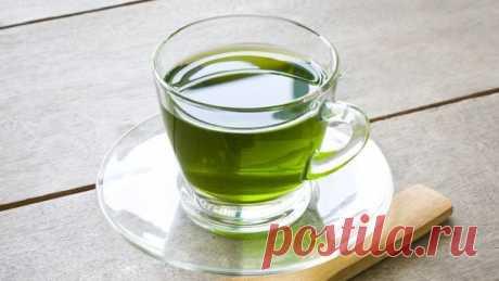 Как пить зеленый чай, чтобы он принес пользу здоровью