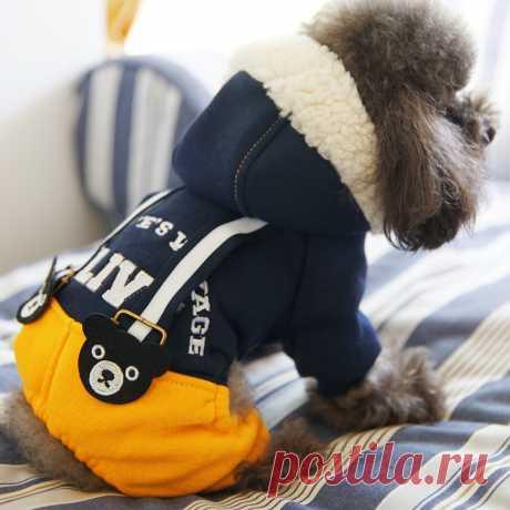 PETCIRCLE Новый Собака Толстовки Куртки Одежда для собак Зима милая собака Комбинезоны Теплый Собака Пальто и пуховики для чихуахуа купить на AliExpress