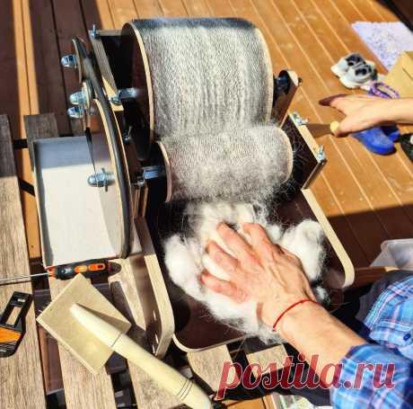 Мама купила необычную машинку для того, чтобы превращать собачью шерсть в удобный материал для творчества. Как работает кардер | Рекомендательная система Пульс Mail.ru