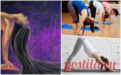 Выпадение волос помогут остановить 7 упражнений йоги