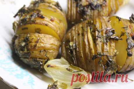 Картофель-гармошка с чесноком и зеленью - хрустящий и вкусный гарнир - рецепт с фото пошагово Картофель-гармошка с чесноком и зеленью - хрустящий и вкусный гарнир - пошаговый кулинарный рецепт приготовления с фото, шаг за шагом.