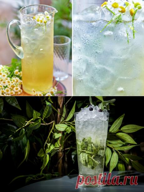 3 оригинальных освежающих напитка — Фактор Вкуса