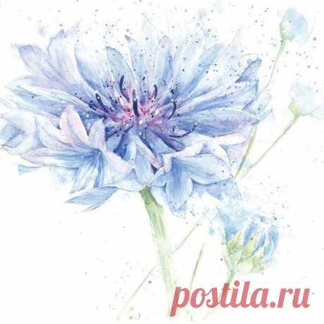 Нежно-воздушные акварельные цветы Rose Eddington