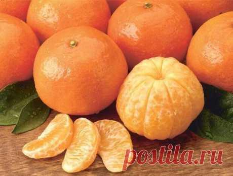 Не нужно быть экспертом, чтобы знать, что фрукты полезны для здоровья. Большинство из них оказывают крайне положительное влияние на наше самочувствие в целом, среди которых один из самых вкусных и прекрасных цитрусовых – мандарин. Этот плод очень похож на апельсин, и поэтому порой люди путают их.