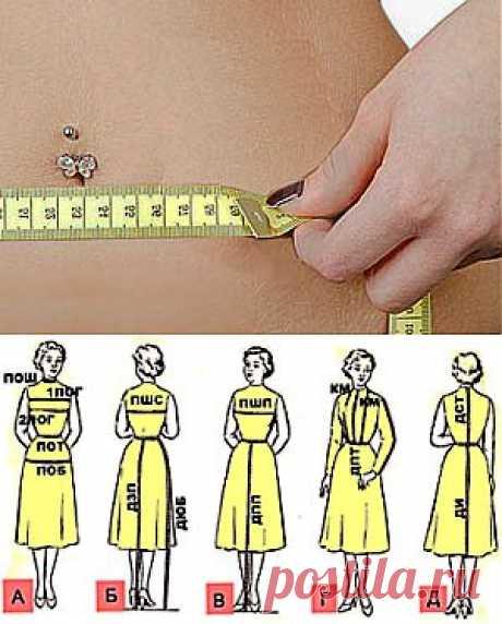 Типы женских фигур | Пропорции женских фигур