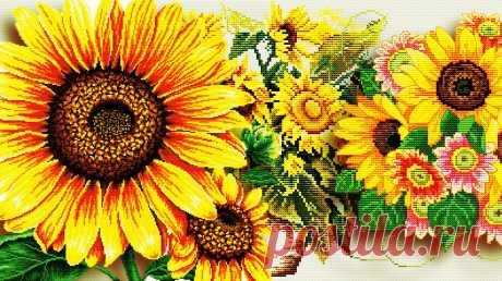 Цветы солнца Sunflover / Подсолнух