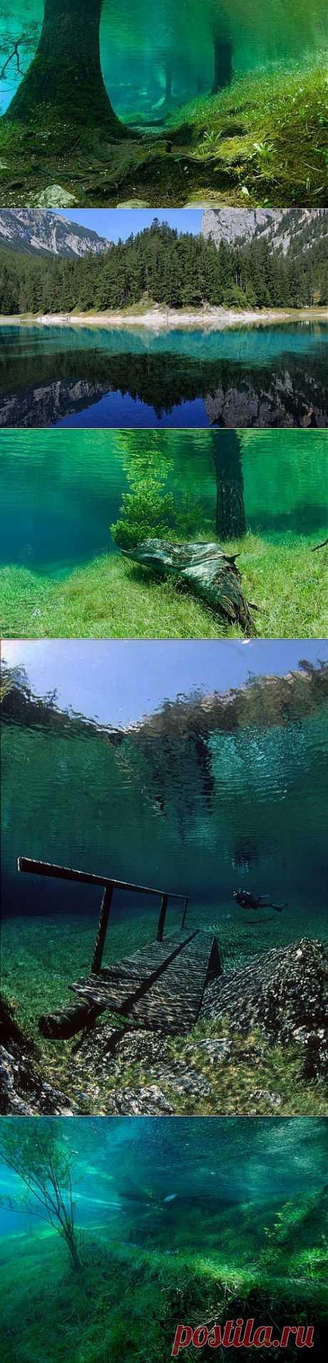 Зелёное озеро | УДИВИТЕЛЬНОЕ