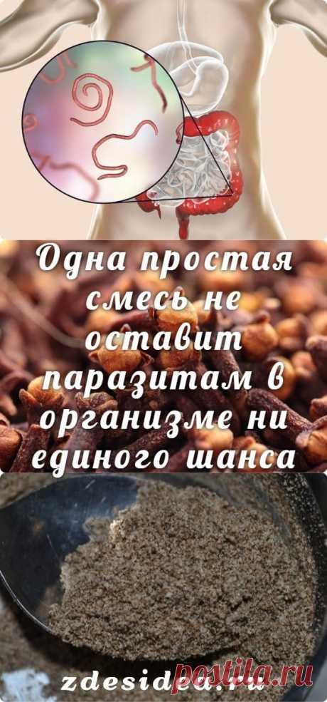 Одна простая смесь не оставит паразитам в организме ни единого шанса - zdesidea.ru