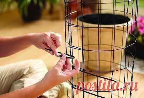 Вертикальная клумба с петунией — Сделай сам, идеи для творчества - DIY Ideas