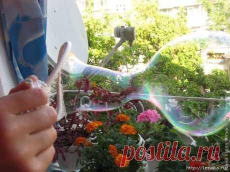 Крепкие мыльные пузыри своими руками / Живой лёд глобальных вопросов