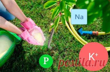 Азотно-фосфорно-калийное удобрение: инструкция по применению для растений