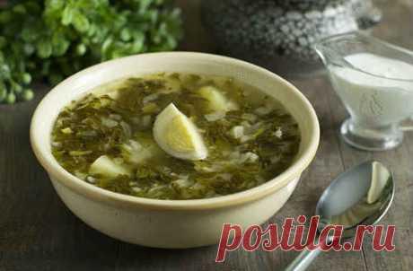 Щавелевый суп с яйцом - 10 лучших рецептов
