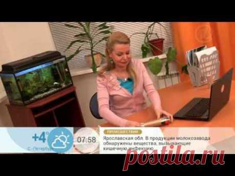Визитница своими руками - YouTube