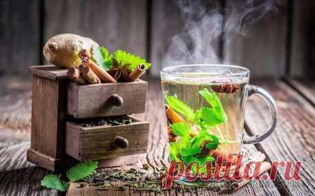 Чай из трав рецепты. Какие травы подходят Чай из трав рецепты. Какие травы подходят для витаминного, успокаивающего, мочегонного, душистого, вкусного чая, чая для иммунитета и на каждый день Рецепты травяных чаев на все случаи жизни. Остается...