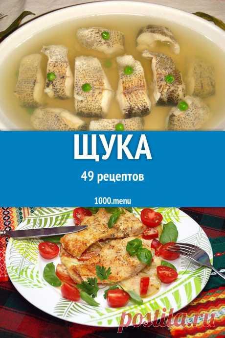 Щука - быстрые и простые рецепты для дома на любой вкус: отзывы, время готовки, калории, супер-поиск, личная КК #рецепты #еда #кулинария #вкусняшки