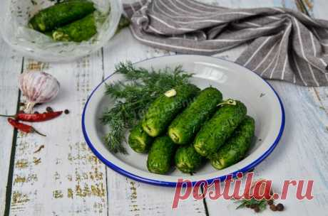 Огурцы малосольные в пакете с чесноком и укропом рецепт с фото пошагово и видео - 1000.menu
