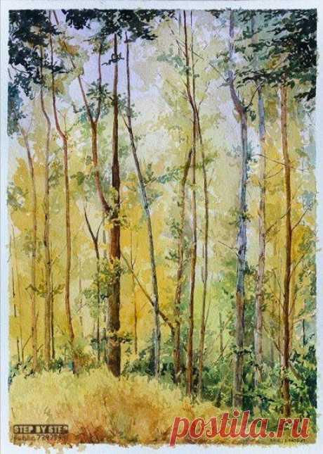 Урок рисования: лес акварелью — DIYIdeas