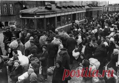 Московский позор: как москвички осенью 1941 года массово готовились встречать немцев - Любители истории - медиаплатформа МирТесен
