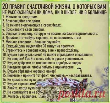 Польза & Вред  Интересное  Простые истины...