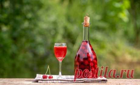 5 лучших настоек на водке и коньяке с первыми летними ягодами | Дачная кухня (Огород.ru)