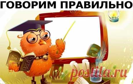 Как говорить по-русски правильно и действительно по-русски — Полезные советы