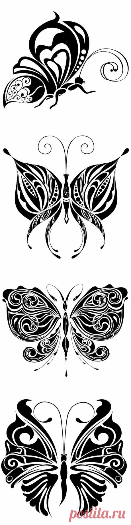 Бабочки (чёрно-белое)..