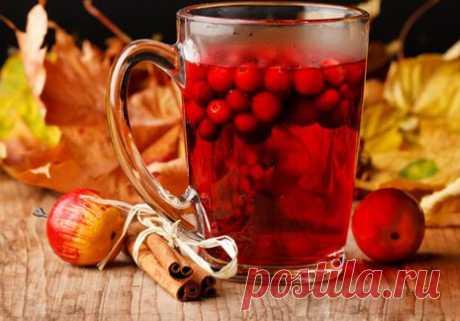 Уникальная ягода шиповник - Perchinka63
