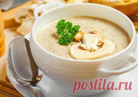 Суп-пюре из шампиньонов со сливками — Sloosh – кулинарные рецепты
