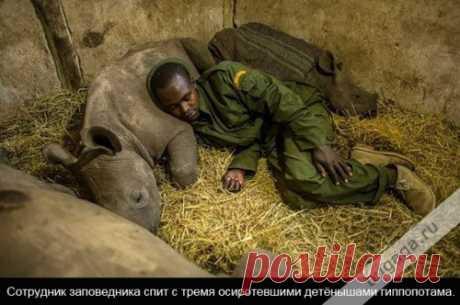 Доброта спасёт мир (24 фото)