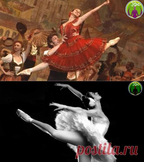 Незабываемые впечатления от совместной работы с великой балериной Н.Ананиашвили   ЗОЖ путь изнутри вовне   Яндекс Дзен