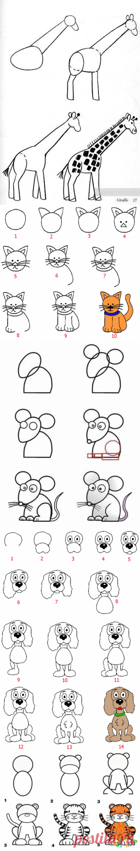 We learn to draw animals. 12 simple schemes — I am happy MOTHER