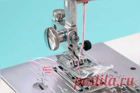 Изучаем универсальную швейную лапку