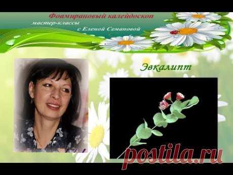 Эвкалипт цветущий. МК Елены Семановой