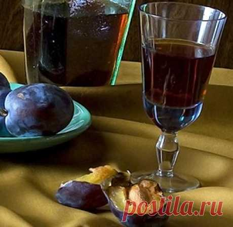 House tincture from plum on vodka and alcohol (the best recipes)
