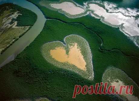 Природа все создает с любовью