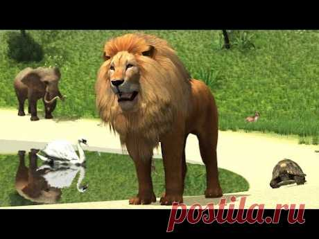 We teach Animals in the Zoo in Russian and English the Developing Animated film For Children