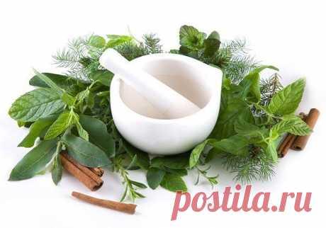 Лучшие ингредиенты для лечения суставов