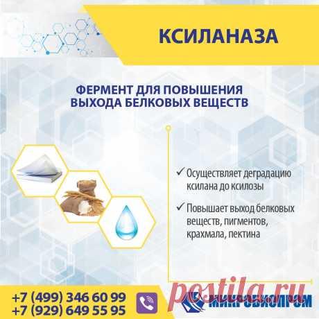 Ксиланаза - фермент повышает выход белковых веществ, пигментов, крахмала, пектина, сахаристых и биологически активных веществ за счет разрушения клеточных стенок растительного сырья (осуществляет деградацию ксилана до ксилозы). Особенности применения ✓ Дозировка зависит от сырья и технологического процесса. ✓ Температурный диапазон работы препарата от 30 до 65°С. ✓ Оптимум рН 4,0-7,5.