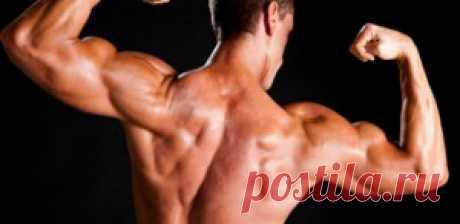 Как нарастить мышечную массу без протеинов? | Sport - My Way