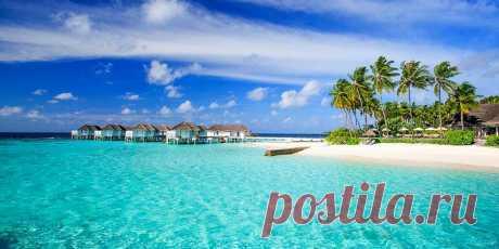 Осуществите свою мечту и побывайте на сказочно-красивых Мальдивских островах! Получите запись ПЕРВОГО в интернете  практического мастер класса «Как отдохнуть на Мальдивах  не дороже Таиланда». Программа мастер класса... https://www.welcomeworld.ru/links/avia/maldives  #Мальдивы #КакОтдохнутьНаМальдивахНедорого