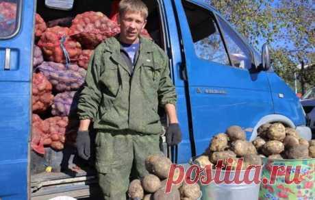 Agro- портал о садоводстве