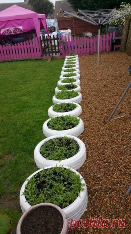Идеи дизайна огорода, идеально подходящий для начинающих / Домоседы