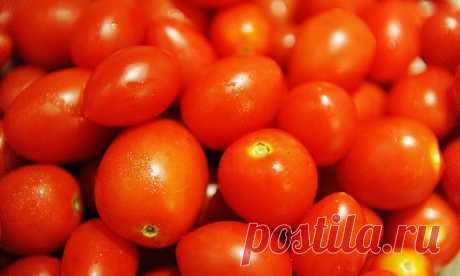 Врачи рассказали о вреде помидоров - Медицина 2.0
