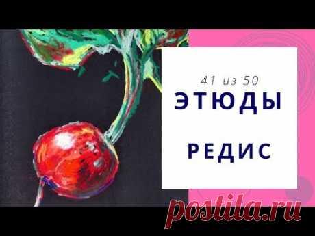 4️⃣1️⃣ РЕДИС (сухая пастель). Серия «50 этюдов»