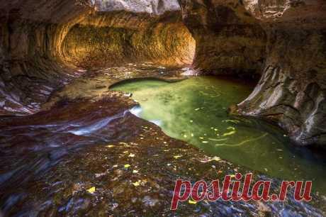 Удивительный мир Национального парка Зайон!.