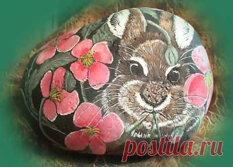 rockpaintingii: View Photo:Poppy Bunny